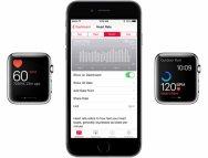 Иллюстрация к новости Apple объяснила, как Apple Watch определяют пульс
